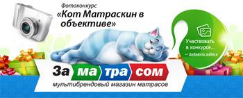 «Кот Матраскин в объективе». Фотоконкурс