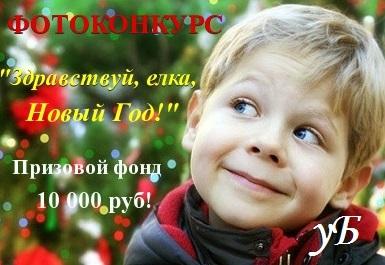Обзор на фотоконкурс «Здравствуй, елка, Новый Год!»